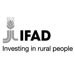 ifad_logo-r2
